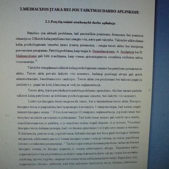 Studentų konsultavimas rengiant rašto darbus / Dana / Darbų pavyzdys ID 988439