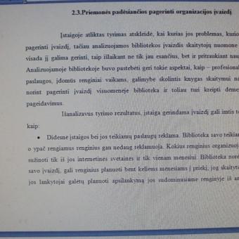 Studentų konsultavimas rengiant rašto darbus / Dana / Darbų pavyzdys ID 988447