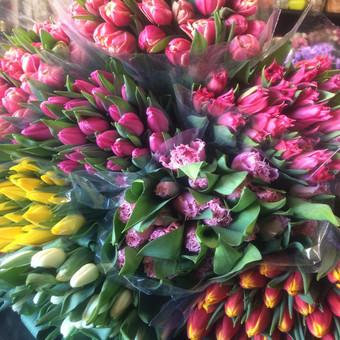 Dalios Gėlės - puokštės, kompozicijos, gėdulo vainikai / Dalia Pranskevičienė / Darbų pavyzdys ID 1001519
