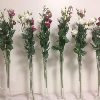 Dalios Gėlės - puokštės, kompozicijos, gėdulo vainikai / Dalia Pranskevičienė / Darbų pavyzdys ID 1001543