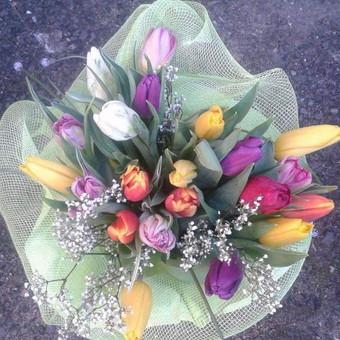 Dalios Gėlės - puokštės, kompozicijos, gėdulo vainikai / Dalia Pranskevičienė / Darbų pavyzdys ID 1001661