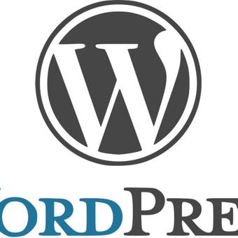 Word Press interneto svetainės turinio sukėlimas