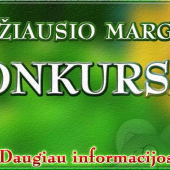 Grafikos dizaineris Kaune / Martynas Leščinskas / Darbų pavyzdys ID 110029