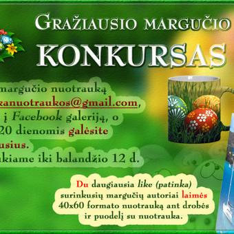 Grafikos dizaineris Kaune / Martynas Leščinskas / Darbų pavyzdys ID 110031