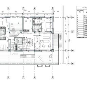 2015m. Individualus gyvenamasis namas Trakuose. Pastato planas