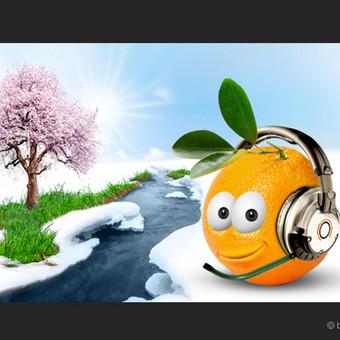 """""""HeasdetOn"""" pavasario paveiksliukas internetinei svetainei."""