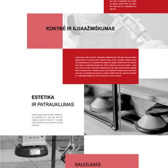 Internetinių svetainių kūrimas Vilniuje / Bona Solutions / Darbų pavyzdys ID 153481