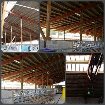 Ūkio paskirties(karvidės) pastato statyba
