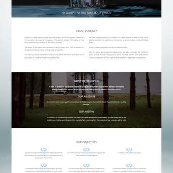Interneto svetainių dizaineris / Skirmantė / Darbų pavyzdys ID 155477