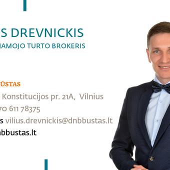 Nekilnojamo turto agentas / Vilius Drevnickis / Darbų pavyzdys ID 158471