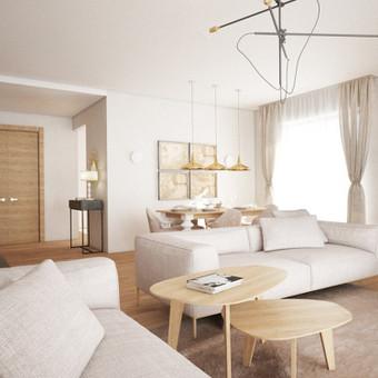 Privataus namo interjeras. Svetainės interjere dominuoja modernios klasikos stilius. Šviesi, natūralių spalvų gama ir keletas kontrastingų interjero detalių - tamsios vyšnios spalvos krėslas, šviestuvo gaubtas, žalias keramikinis stalelis suteikia interjerui modernumo.