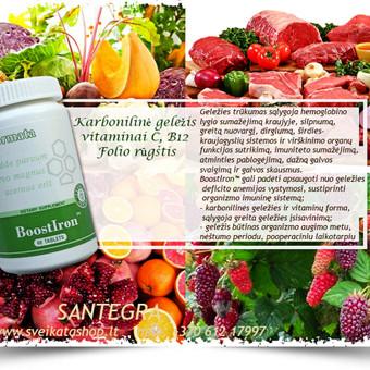 Prekyba Santegros maisto papildais / Alla Nekrasova / Darbų pavyzdys ID 166737