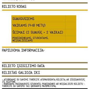 Bilietas (internetiniam puslapiui)