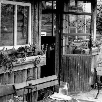 Fotografė Šiauliuose / Rimantė Bui / Darbų pavyzdys ID 194701