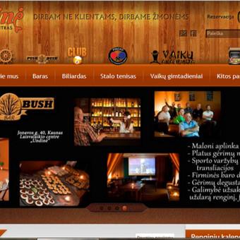 """Laisvalaikio centras """"Undinė"""", tinklapio kūrimo koordinavimas ir administravimas"""