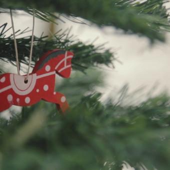 Asmeninis Kalėdinis klipas / Sveikinam su artėjančiom, mielieji!