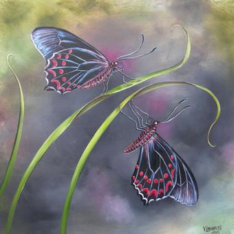 Egzotiniai drugeliai 57x53, al.drobė.