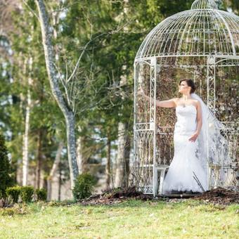 Vestuvių fotografas Lietuvoje, užsienyje / Mindaugas Dulinskas / Darbų pavyzdys ID 205543