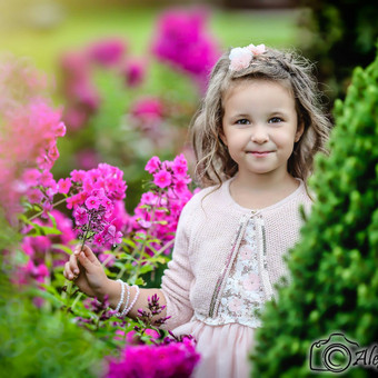 Fotografas Šiauliuose / Alexey Lazarev / Darbų pavyzdys ID 210247