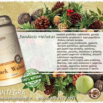 Prekyba Santegros maisto papildais / Alla Nekrasova / Darbų pavyzdys ID 212795