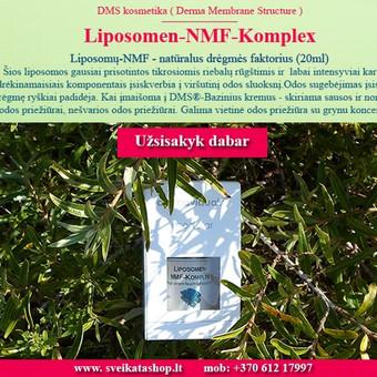 Hyalurono liposomų Plus koncentratas / Alla Nekrasova / Darbų pavyzdys ID 214171