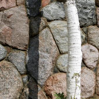 skaldyto akmens mūras