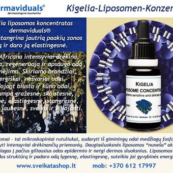 Hyalurono liposomų Plus koncentratas / Alla Nekrasova / Darbų pavyzdys ID 219817