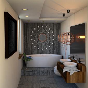 Vonios dizainas