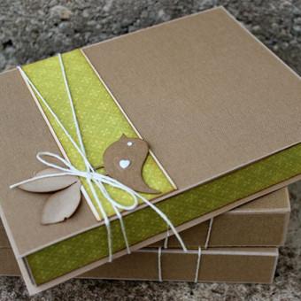 dėžutė nuotraukoms, usb arba dovanai.
