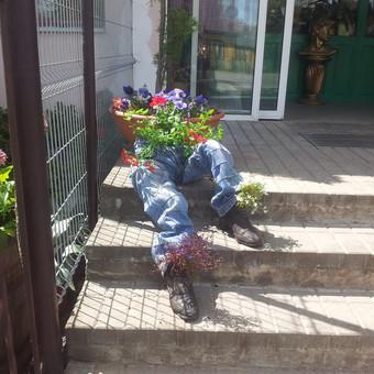 Dekoruojame lauko augalais ir gėlėmis kiemus, terasas.Kuriame kompozicijas į indus, vazonus.