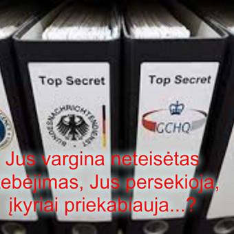 Privatus detektyvas Vilniuje / Valentinas / Darbų pavyzdys ID 229611