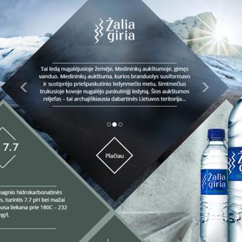 ŽALIOS GIRIOS kampanija/prekės ženklo atnaujinimas: GYVYBĖ IŠ LIETUVOS GELMIŲ. Idėjos ir jos įgyvendinimo bendraautorė/tekstų kūrėja.
