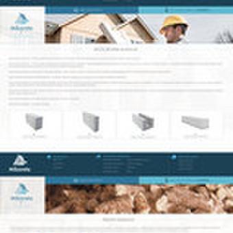 Internetinio puslapio dizainas Mikorsta