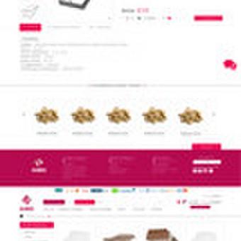 Internetinio puslapio dizainas Alnida