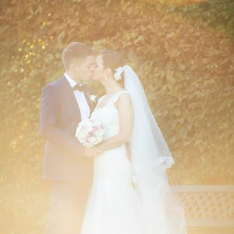 Vestuvių fotografija su meile. / ALEX ZAPA / Darbų pavyzdys ID 239869