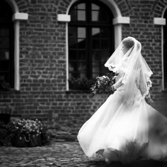 Vestuvių fotografija su meile. / ALEX ZAPA / Darbų pavyzdys ID 239877