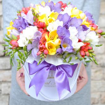 Floristas, gėlių salonas / Karolis Strazdas / Darbų pavyzdys ID 245179