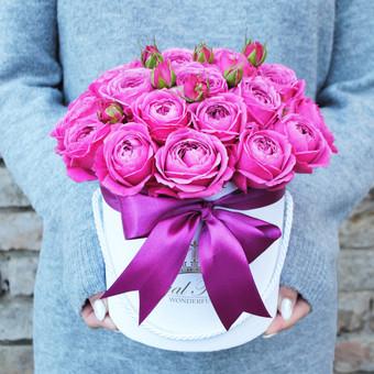 Floristas, gėlių salonas / Karolis Strazdas / Darbų pavyzdys ID 245189