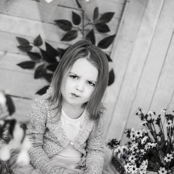 Fotografas / Liucija Karalienė / Darbų pavyzdys ID 250005