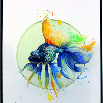 Tapyba akvarele