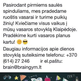 Tekstų kūrėjas / Dominyka / Darbų pavyzdys ID 255025