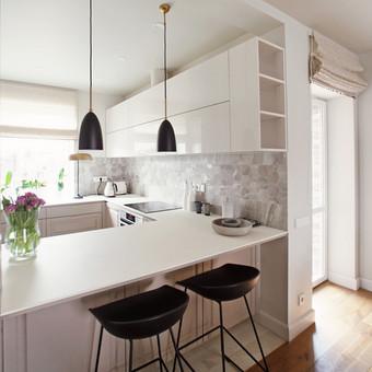 Virtuvės interjero dizainas