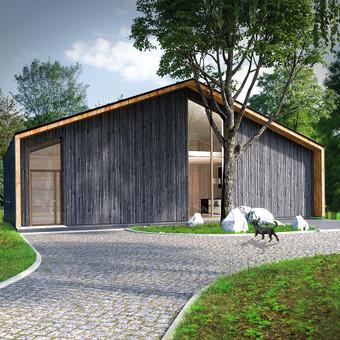 Individualaus gyvenamojo namo projektas. Stadija - gautas statybos leidimas