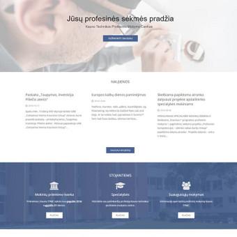 Interneto svetainių dizaineris / Skirmantė / Darbų pavyzdys ID 262627