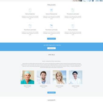 Interneto svetainių dizaineris / Skirmantė / Darbų pavyzdys ID 262639