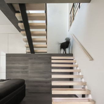 Architektūra / Dizainas / Statybos teisė / 2mm architektai / Darbų pavyzdys ID 270349
