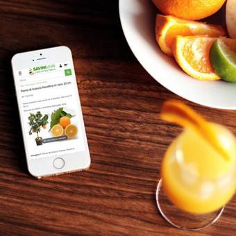 Internetinė vaisių ir vaismedžių parduotuvė http://savinivivai.it