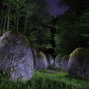 Fotografas visoje Lietuvoje! / Linas Bielinis / Darbų pavyzdys ID 280167