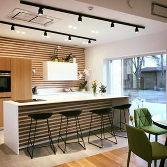 Virtuvės baldas  su ąžuolo medienos dekoru