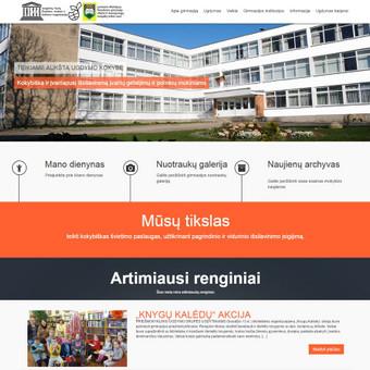 Internetinių svetainių kūrimas Vilniuje / Lauras Pranckevicius / Darbų pavyzdys ID 288271